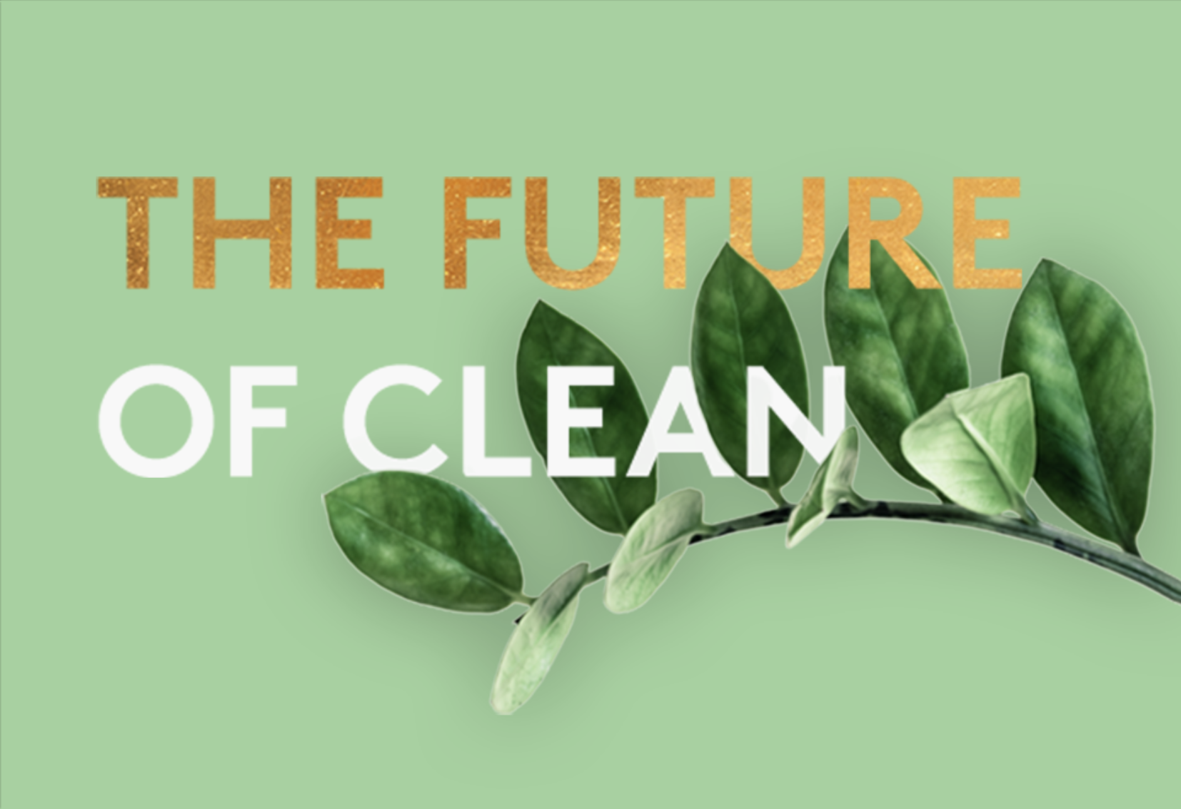 The Future of Clean